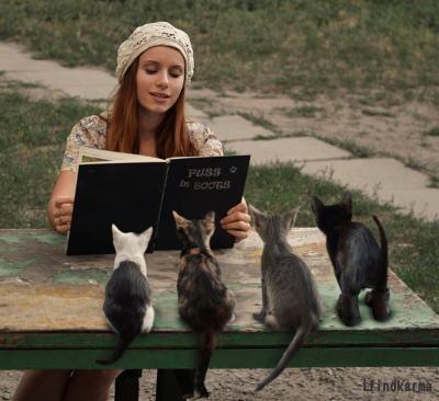 猫と読書する外国の女性